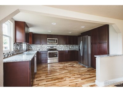 Loveland Single Family Home For Sale: 410 W 12th St