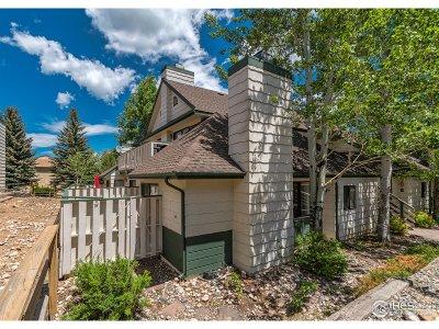 Estes Park Condo/Townhouse For Sale: 1010 S Saint Vrain Ave