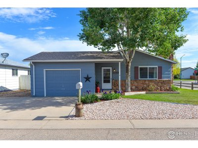 Greeley Single Family Home For Sale: 2001 Wedgewood Ct