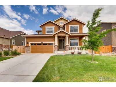Thornton Single Family Home For Sale: 16067 Elizabeth St