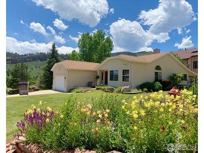 Lyons Single Family Home For Sale: 145 Eagle Canyon Cir
