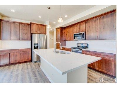 Loveland Single Family Home For Sale: 114 N Pamela Dr
