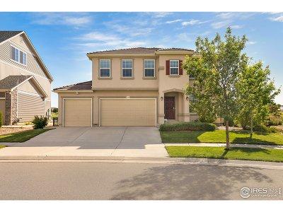 Denver Single Family Home For Sale: 5144 Malaya St