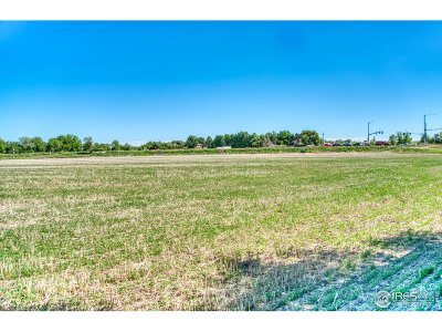 Fort Collins Farm & Ranch For Sale: 4801 E Harmony Rd