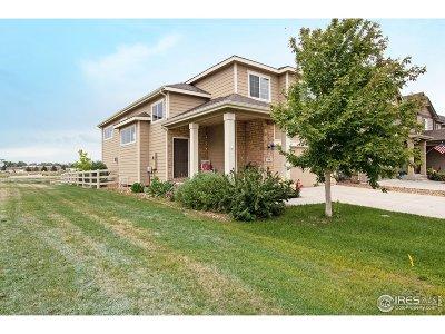 Fort Collins Single Family Home For Sale: 2902 Denver Dr