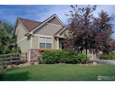 Lyons Single Family Home For Sale: 423 Raymond Ct