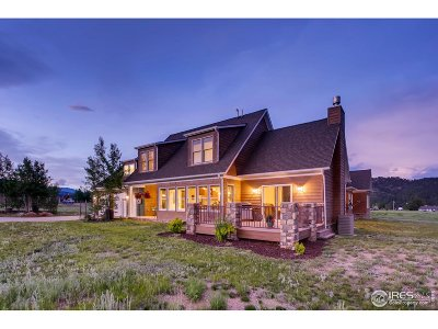 Estes Park Single Family Home For Sale: 1450 Deer Path Ct