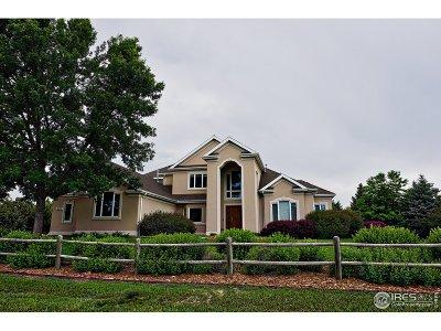 Single Family Home For Sale: 8025 Scenic Ridge Dr