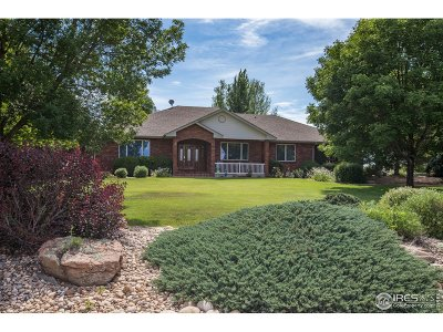 Windsor Single Family Home For Sale: 8886 Longs Peak Cir