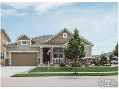 Fort Collins Single Family Home For Sale: 5740 Coppervein St