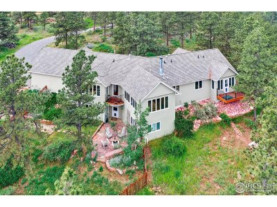 Longmont Single Family Home For Sale: 3920 Stone Canyon Rd