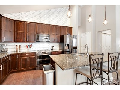 Single Family Home For Sale: 2221 Friar Tuck Ct