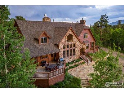 Nederland Single Family Home For Sale: 22955 Peak To Peak Hwy