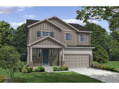 Loveland Single Family Home For Sale: 139 Anders Ct