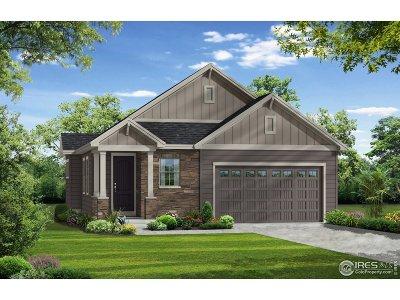 Loveland Single Family Home For Sale: 3531 Taylor Walker St
