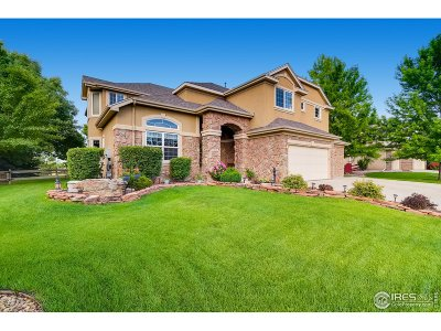 Single Family Home For Sale: 3878 Poudre Dr