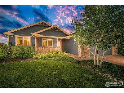 Loveland Single Family Home For Sale: 4496 Hayler Ave