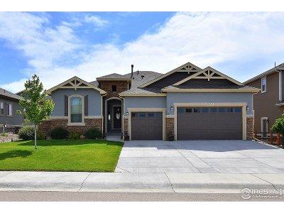 Johnstown Single Family Home For Sale: 4337 Lemon Grass Dr