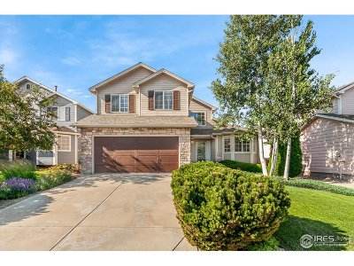 Fort Collins Single Family Home For Sale: 556 Kim Dr