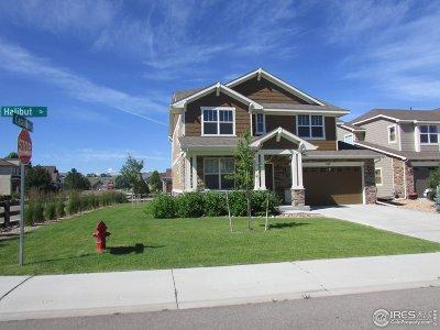 Windsor Single Family Home For Sale: 167 Halibut Dr