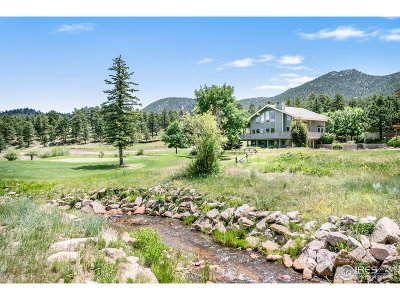 Estes Park Single Family Home For Sale: 1484 Creekside Ct
