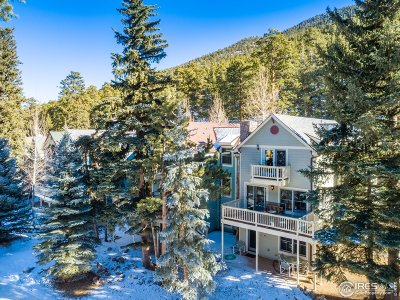 Estes Park Condo/Townhouse For Sale: 2222 Highway 66 #12