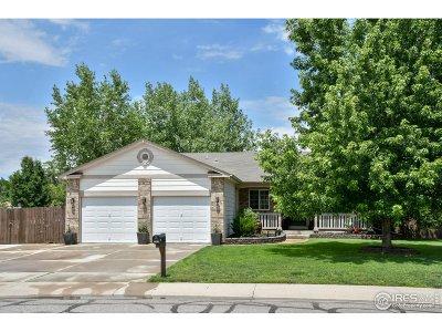 Brighton Single Family Home For Sale: 1123 Denver St