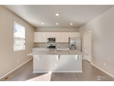 Firestone Single Family Home For Sale: 10377 S Crescent St