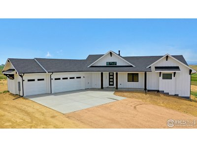 Greeley Single Family Home For Sale: 245 83rd Ave