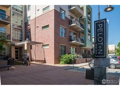 Boulder Condo/Townhouse For Sale: 3601 Arapahoe Ave #204