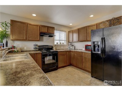 Denver Single Family Home For Sale: 8532 Tejon Way