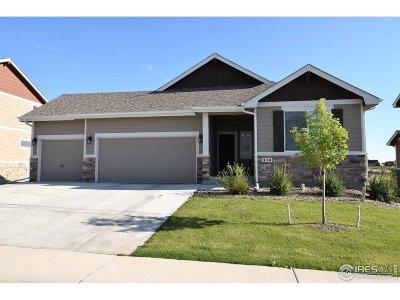 Windsor Single Family Home For Sale: 916 Barn Yard Dr