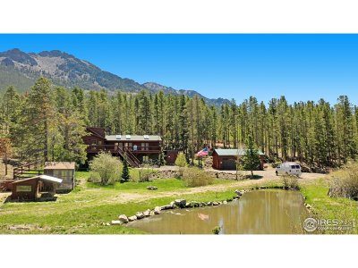 Estes Park Single Family Home For Sale: 6128 Highway 7