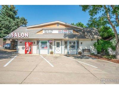 Loveland Multi Family Home For Sale: 1244 N Lincoln Ave