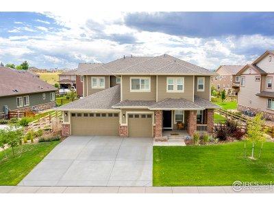 Single Family Home For Sale: 2627 Walkaloosa Way