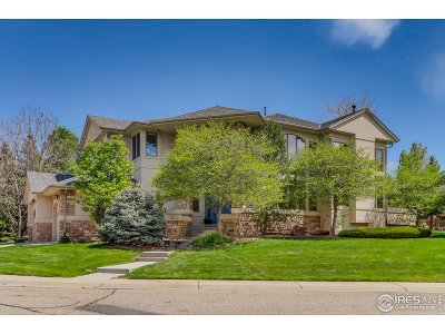 Lafayette Single Family Home For Sale: 787 Niwot Ridge Ln