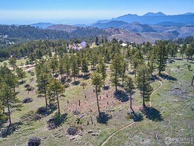 Boulder Residential Lots & Land For Sale: 783 Dixon Rd