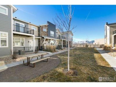 Longmont Condo/Townhouse For Sale: 745 Robert St