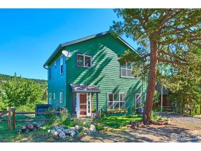 Nederland Single Family Home For Sale: 149 W Boulder St