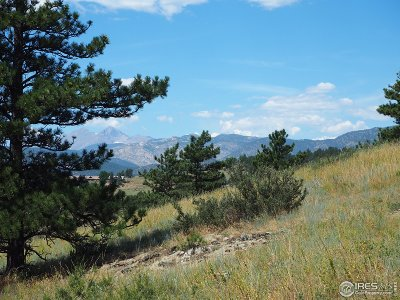Lyons Residential Lots & Land For Sale: 2118 Dry Creek Dr