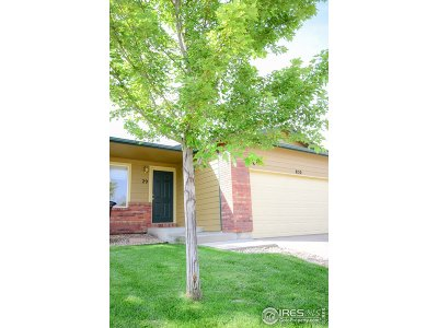 Larimer County Condo/Townhouse For Sale: 850 S Overland Trl #29