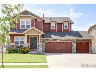Longmont Single Family Home For Sale: 2293 Winding Dr
