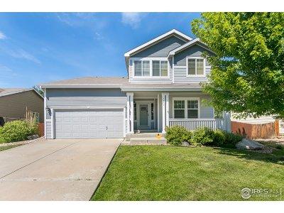 Loveland Single Family Home For Sale: 1495 Tiger Ave