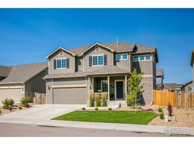 Johnstown Single Family Home For Sale: 480 Homestead Ln