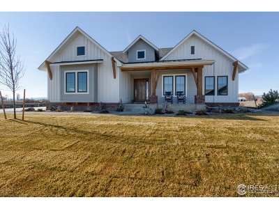Berthoud Single Family Home For Sale: 516 Nesting Eagles Way