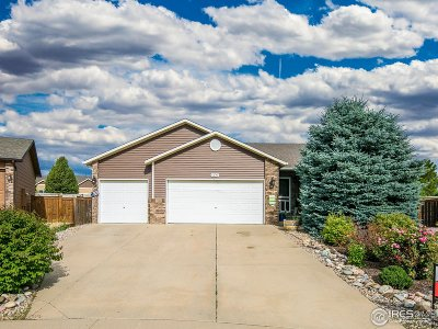 Weld County Single Family Home For Sale: 1305 Cliffrose Ct