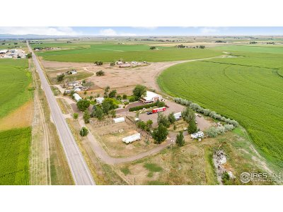 Ault Single Family Home For Sale: 21365 Highway 14