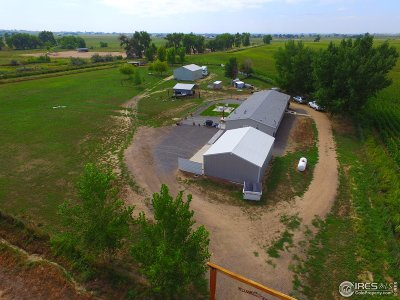 Eaton Single Family Home For Sale: 23514 County Road 72