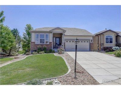 Thornton Single Family Home For Sale: 8552 E 152nd Ln