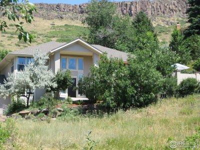 Golden Single Family Home For Sale: 415 1st St